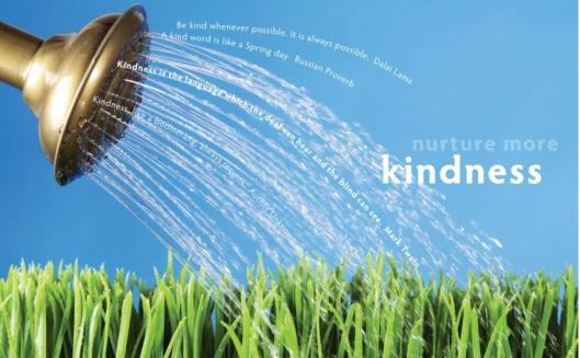kindness Lg