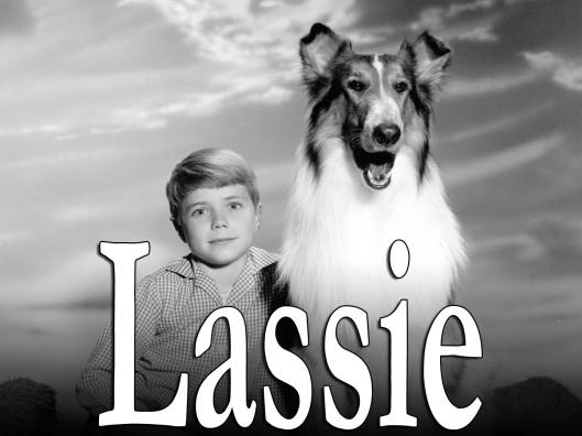 Lassie (CBS) 1954 - 1974 Shown: Jon Provost